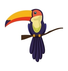 toucan bird animal vector image