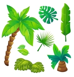 Stylized jungle trees set vector