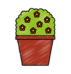 decorative garden pot isolated icon vector image