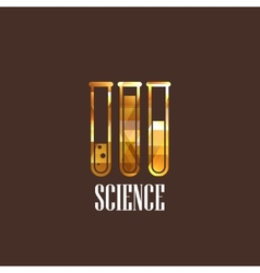 with laboratory equipment icon vector image