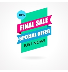 Final sale banner poster background vector
