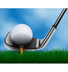 Golf ball and club in front of grass vector image