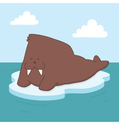 Walrus on ice vector