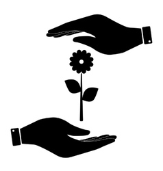 Flower in hand icon vector