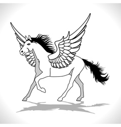 Pegasus winged stallion vector