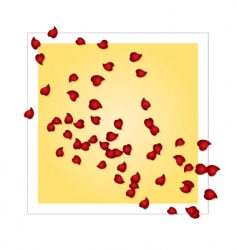 valentines card with rose petals vector image vector image