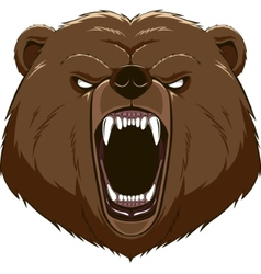 Angry bear head mascot vector