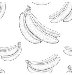 Bananas hand drawn black and white sketch as vector
