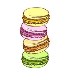 Pasty traditional sweet macaroons biscuit cartoon vector