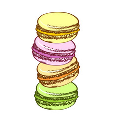 pasty traditional sweet macaroons biscuit cartoon vector image vector image