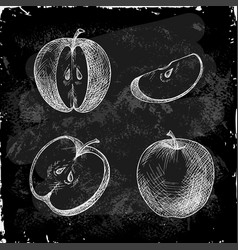 set of hand drawn apple vector image