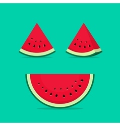 Watermelon slices isolated on vector image vector image