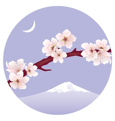 Branch of sakura vector