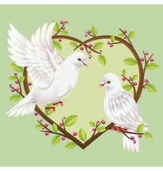 Dove on a heart shape tree vector