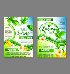 hello spring flowers floral posters set vector image