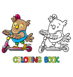coloring book of little funny owl on the scooter vector image vector image