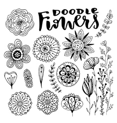 Flowers decorations set hand drawn vector