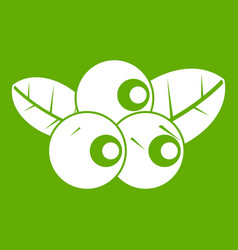 blueberries icon green vector image vector image