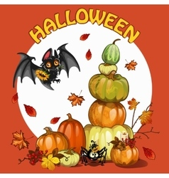 Halloween set with pumpkin bat and spider vector