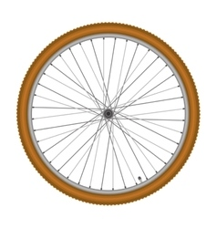 Bicycle wheel on white background vector