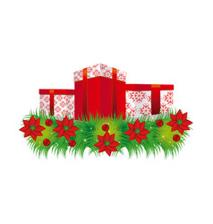 Ornament christmas flowers with set collection box vector