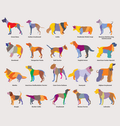 set of colorful mosaic dogs silhouettes-2 vector image