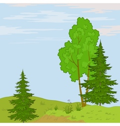 Landscape trees on hill vector