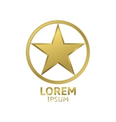 Golden star logo vector