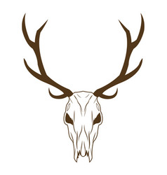 Deer skull in tribal style animal skull with vector