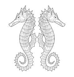 Sea horse coloring for adults vector image vector image