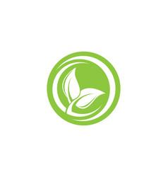 tree leaf logo design eco-friendly concept vector image