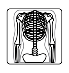 Monochrome silhouette with x-ray of bones vector