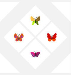 Flat moth set of moth beauty fly archippus and vector
