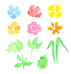 Watercolor set of flowers and leaves vector