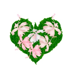 Pink hibiscus flowers in a heart shape vector