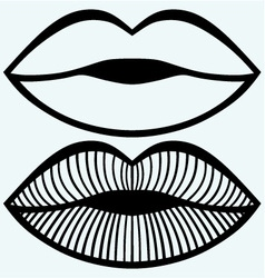 Passionate female lips vector