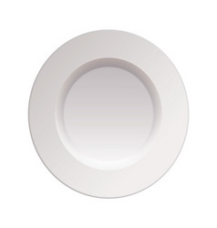 china dinner plate vector image