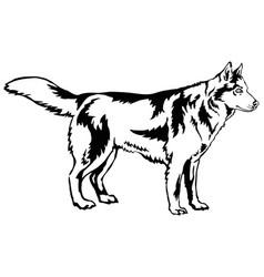 decorative standing portrait of dog siberian vector image vector image