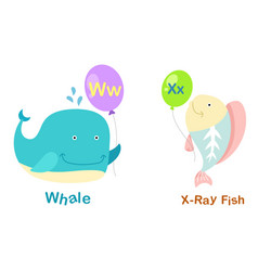 isolated alphabet letter w-whalex-x-ray fish vector image vector image