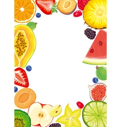 Fruit and berries frame vector