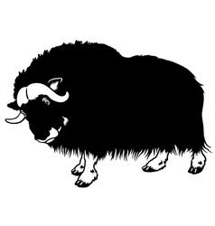 muskox black white vector image
