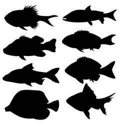 Set of different small fish silhouettes vector