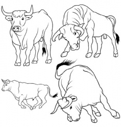 bull set vector image vector image
