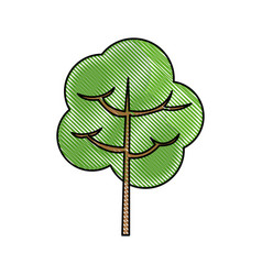 Drawing tree branch foliage ecology image vector