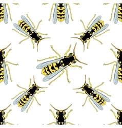 Seamless pattern with wasp hand-drawn wasp vector