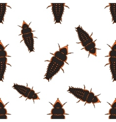 Seamless pattern with trilobite beetle duliticola vector