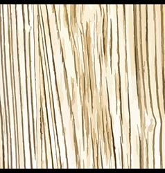 random wooden texture background vector image vector image