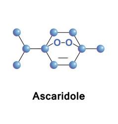 Ascaridole is a bicyclic monoterpene vector