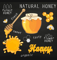 set of jars with honey vector image