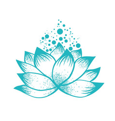 abstract design of lilly lotus flower vector image